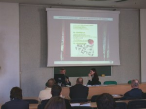 "Conference: ""Revitalization as a new quality in a City Organism"", Economy Academy, Poznan, 2006 regeneracja 2006 prezentacja um"